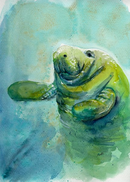 Manatee on my right watercolor at boudreau-art.com