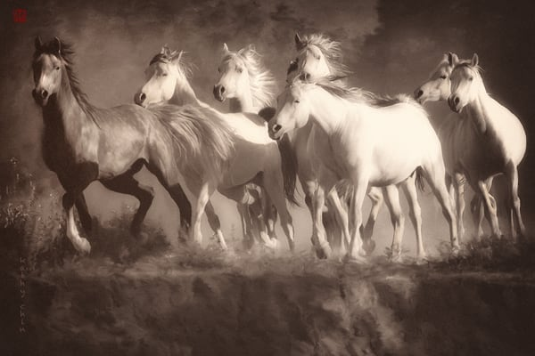 """Ready to Rumble,"" Horses, Equine, Photo Art. Photographs for sale by Kathy Chin."