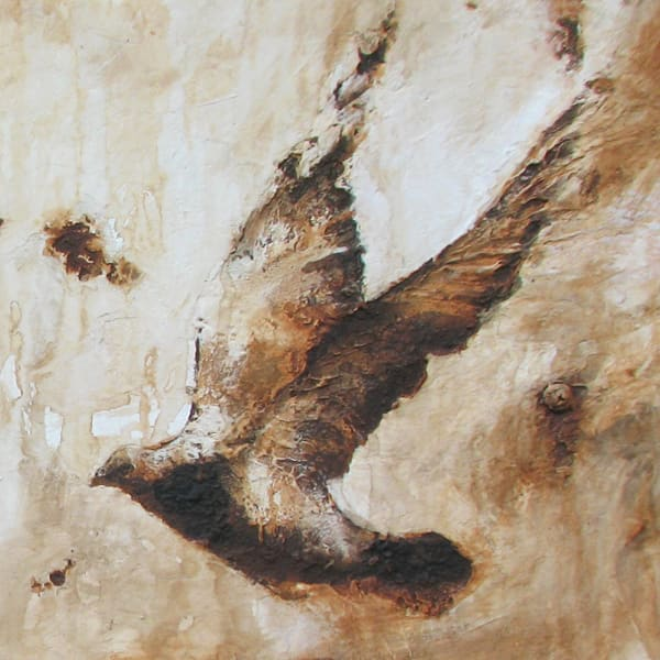 Rust Pigeons2