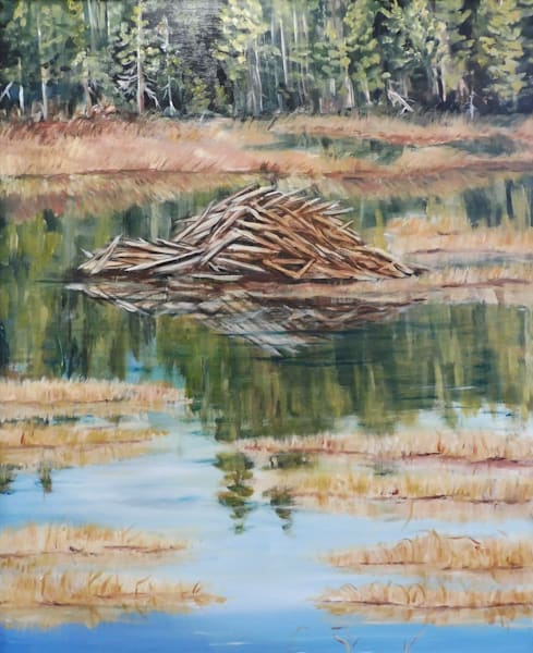 Beaver Lodge on the Opeongo