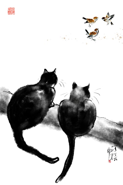 Cats 064 Photography Art   Cheng Yan Studio