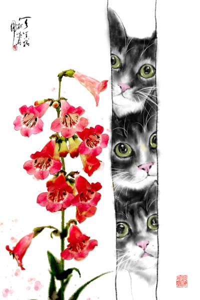 Cats 067 Photography Art   Cheng Yan Studio