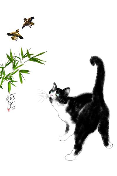 Cats 086 Photography Art | Cheng Yan Studio