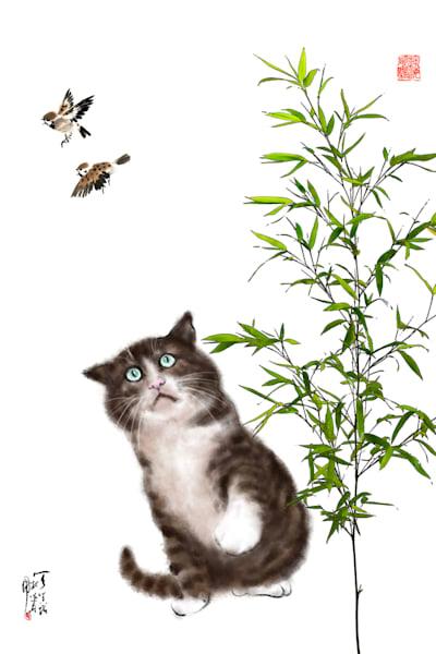 cats 089