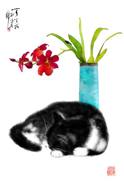 cats 092