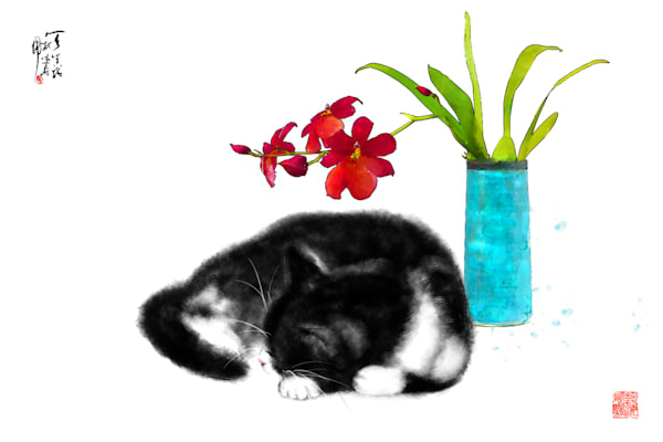 cats 102