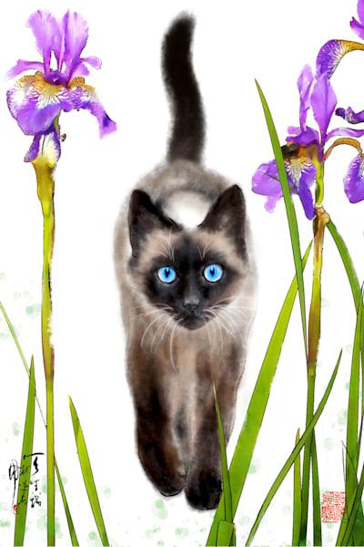Cats 108 Photography Art | Cheng Yan Studio