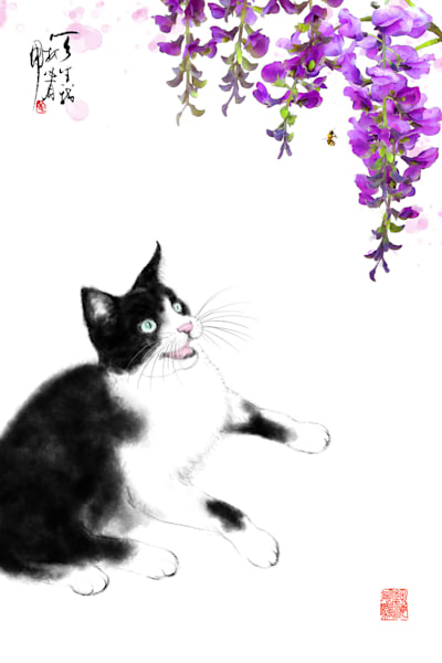 cats 099