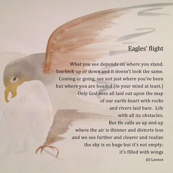 """Eagle's Flight by Jill Lawton 