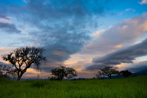 Stormy afternoon in the Santa Ynez Valley