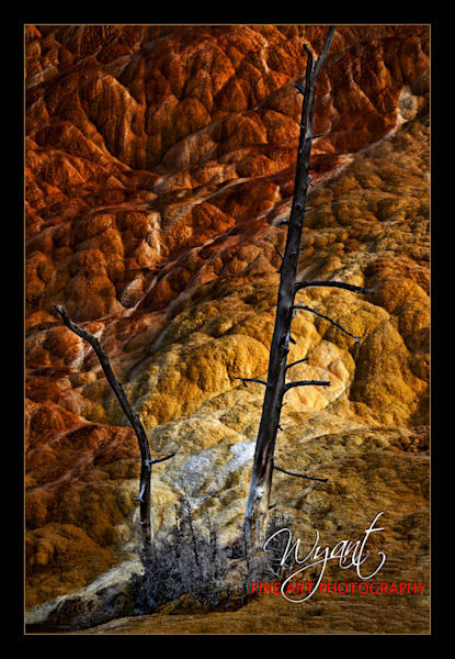 Yellowstone Abstract:  Shop Fine Art Photography | Jim Wyant, Master Craftsman (317)663-479