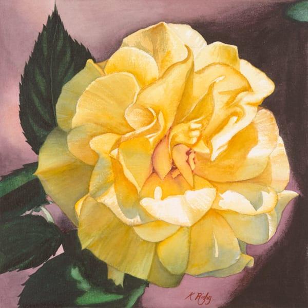 Rose 5 - Original