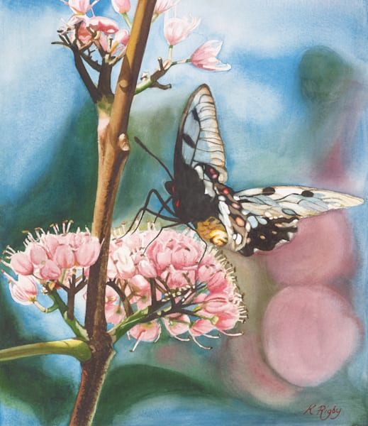 Lacewing Butterfly - Original