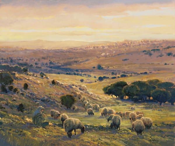 Shepherd's Field