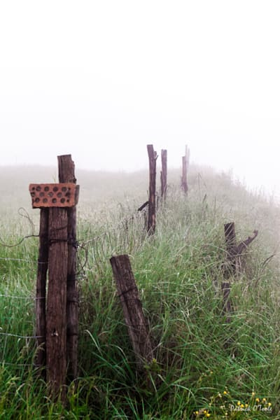 Fence In Fog Photography Art | Patrick O'Toole Photography, LLC
