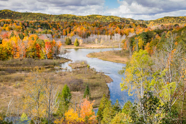Autumn along the Manistee River