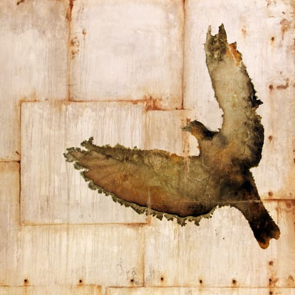Pigeon Panel 2