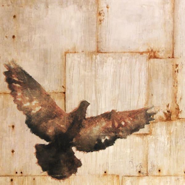 Pigeon Panel 1