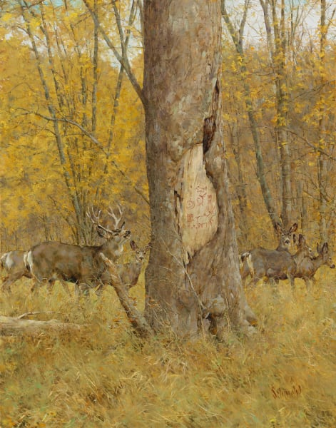 Animals and Nature Paintings and Prints by Bradley Schmehl