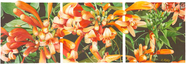 Honeysuckle Triptych - Original