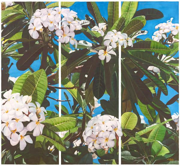 White Frangipani Triptych - Original
