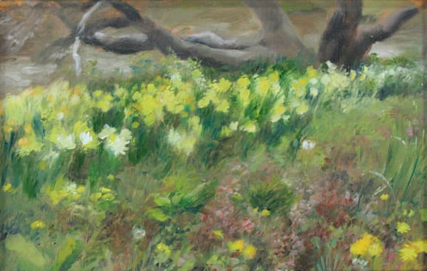 Spring Daffodils - Original Oil Painting for Sale - Spring Flowers - Art of Jason Rafferty - Asheville NC