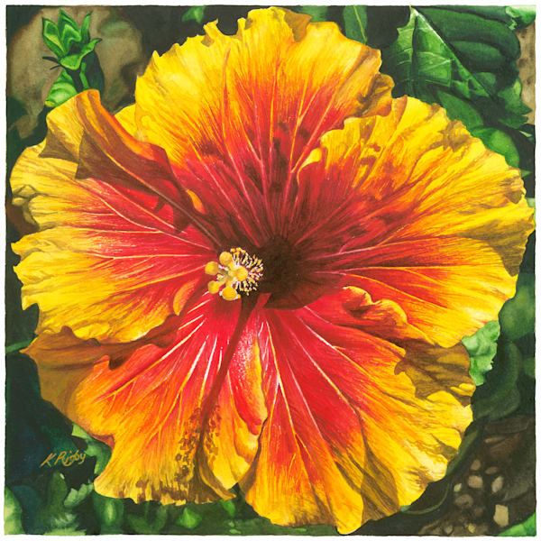 Yellow Hibiscus - Original