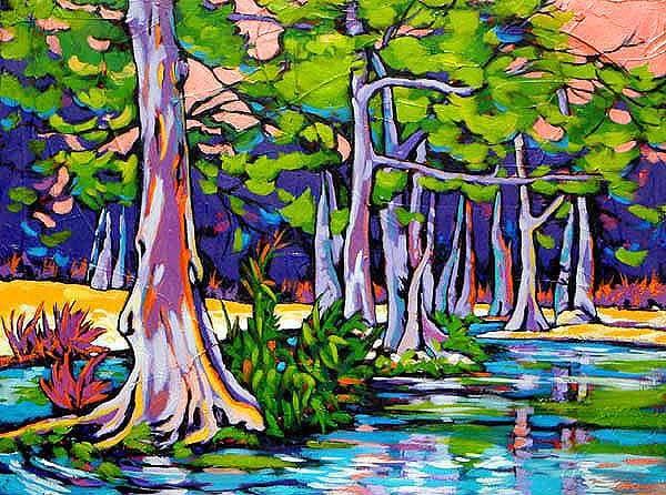 Cypress Sunset Art | Sally C. Evans Fine Art