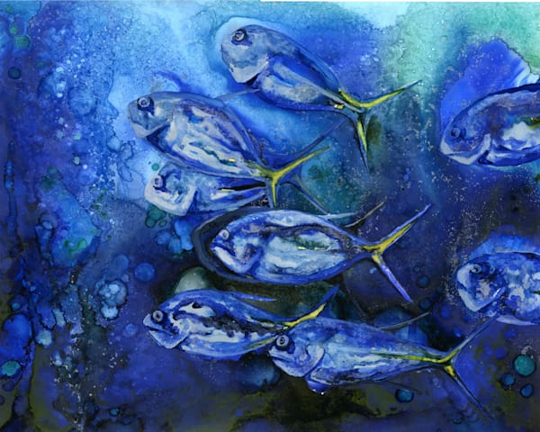 amberjack school of fish art, painting by heidi stavinga, alcohol ink
