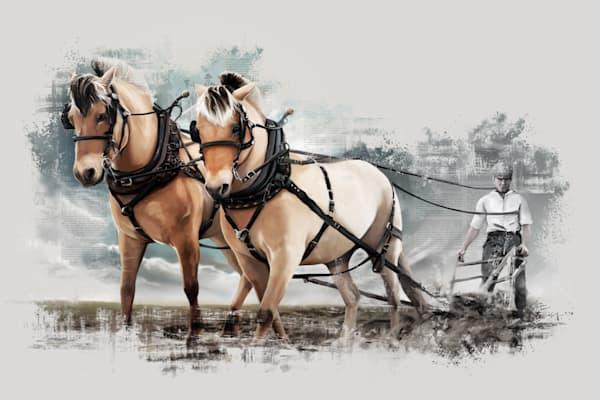 Fjord Horse Team Fjorward