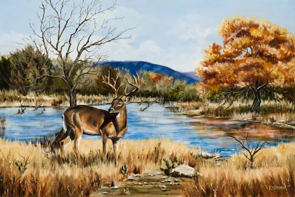 Texas landscape art, original paintings and fine art prints on paper, canvas, metal by texas artist, Creative Kina Tiemann