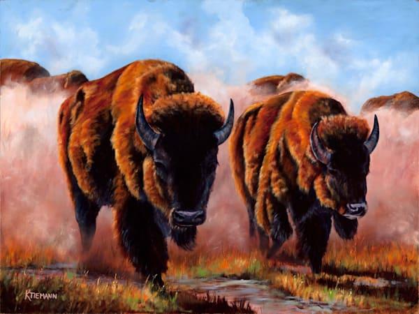 Buffalo Dust, fine art print of buffaloes kicking up dust