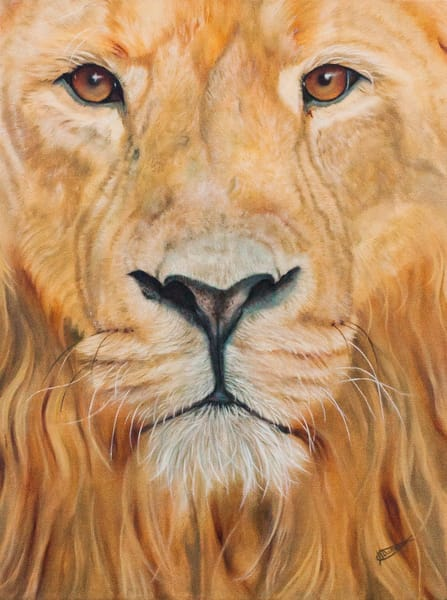 """""""Caught In Your Gaze"""" by Jeanette Sthamann 