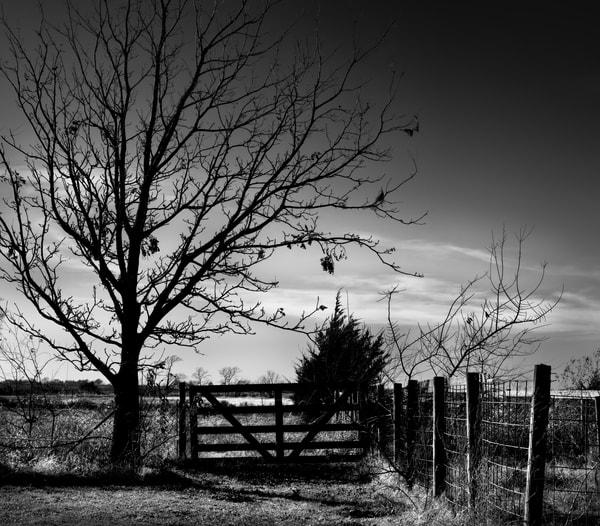 Black and White Late Fall Ranch Farm Sunrise Landscape Wall Decor fleblanc