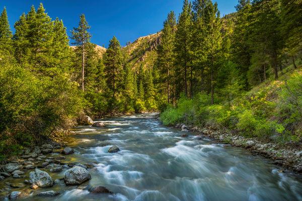 Big Loon Creek | MF Salmon River
