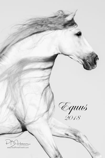 Equus 2018 Calendar (12 X 18) | HoofPrintsFineArt