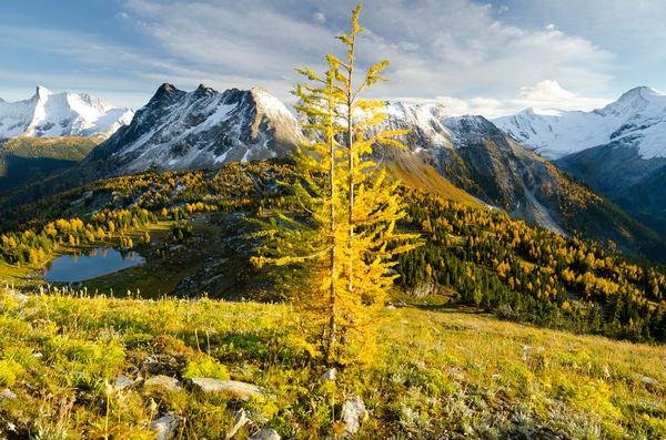 Jumbo Pass- East and West Kootenays, British Columbia