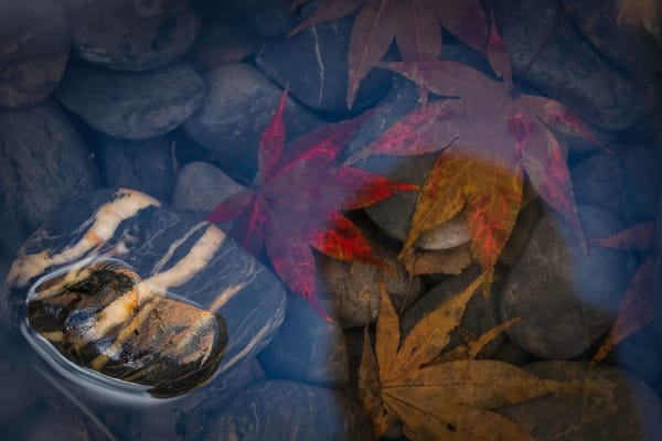 water photographs, images of pebbles and rocks, fall leaves, abract art photographs,