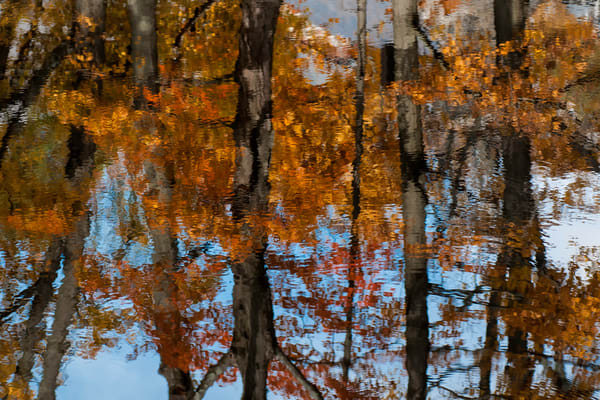 water art, landscape photography, reflective water, images of trees and fall colorful leaves,