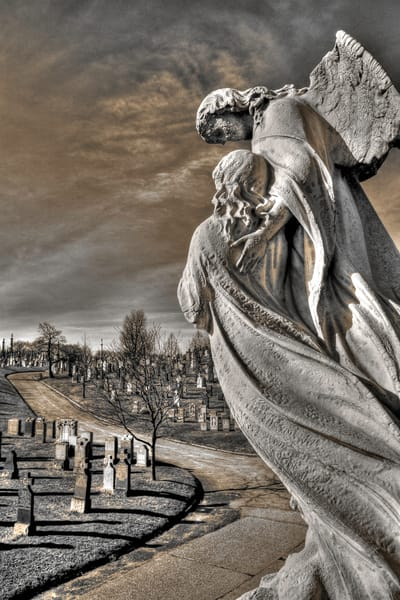 images of cemeteries, New York cemeteries, winged angels on graves, brothers and sisters,