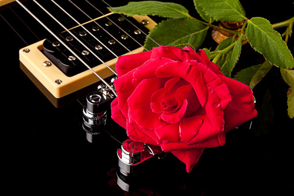 Red Rose on Black Electric Guitar Image