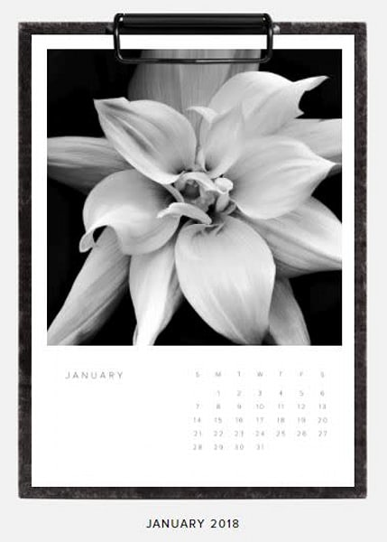 Black-and-White Flower Art Calendar 2018