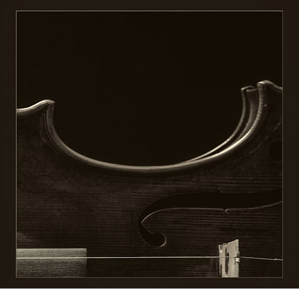 Horizontal Antique Violin Body Image 1732.43