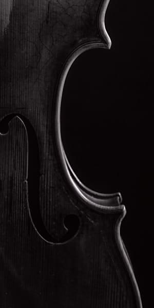 Side Light Violin Body Image 1732.42