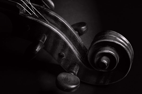 Violin Scroll on Black Music Art 73