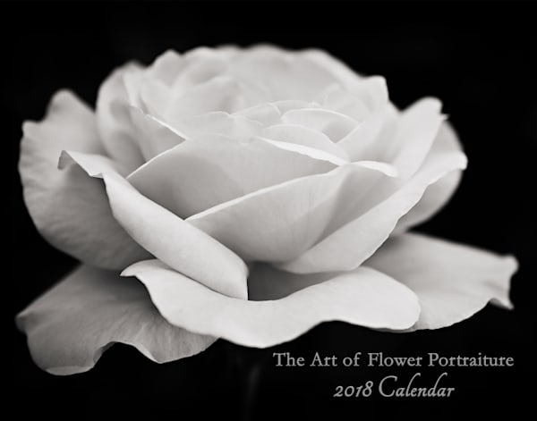 Flower Portraiture Art Calendar 2018