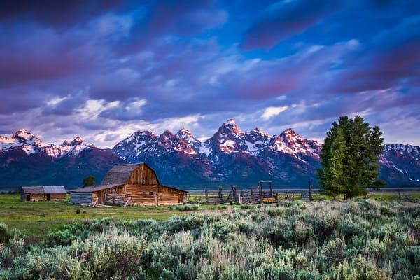 Mormon Row | Grand Teton National Park