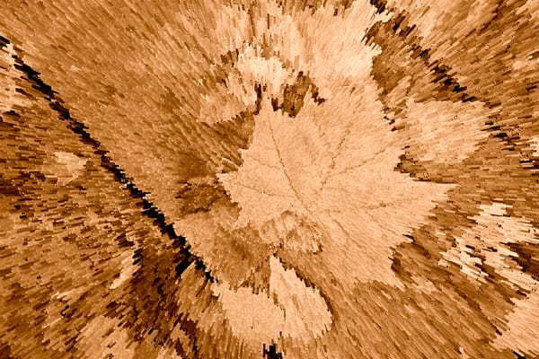 Fall Leaves in Sepia Art Prints 6701.27