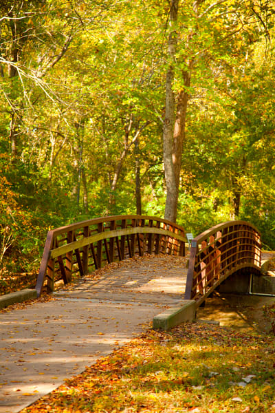 Footbridge in Autumn Wall Art 1400.03