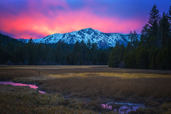 Winter Meadow Lake Tahoe Print